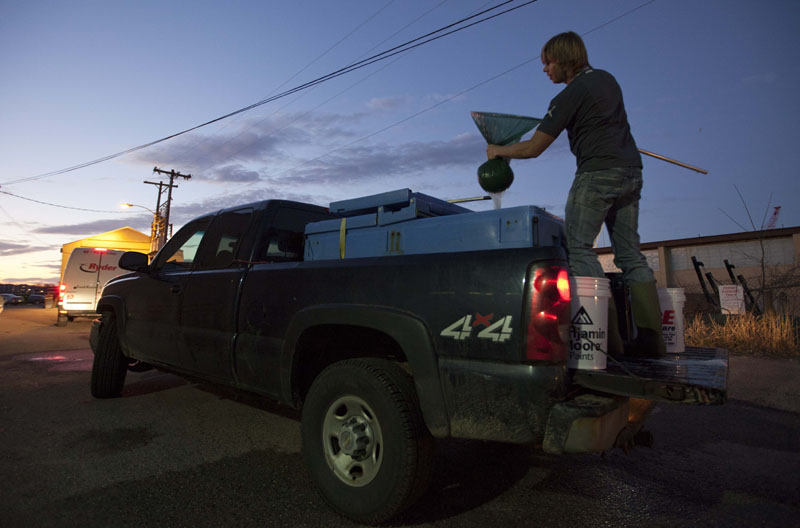 EEL BUSINESS: A buyer squeezes water from a net of elver while emptying a tank on the back of a fisherman's truck recently in Portland. The baby eels are fetching the fishermen more than $2,000 per pound this year.