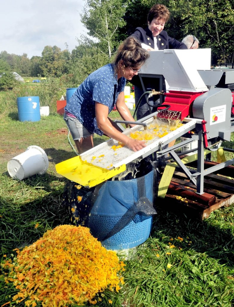 HANDS ON TOUR: Sen. Susan Collins climbed up to feed peppers into equipment as Johnny's Selected Seeds employee Amy Dolley collects seeds during a tour of the company Research Farm in Albion on Tuesday.