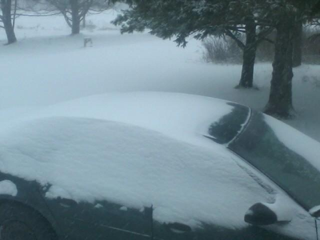 The early-morning snow was drifting in Vassalboro on Thursday.