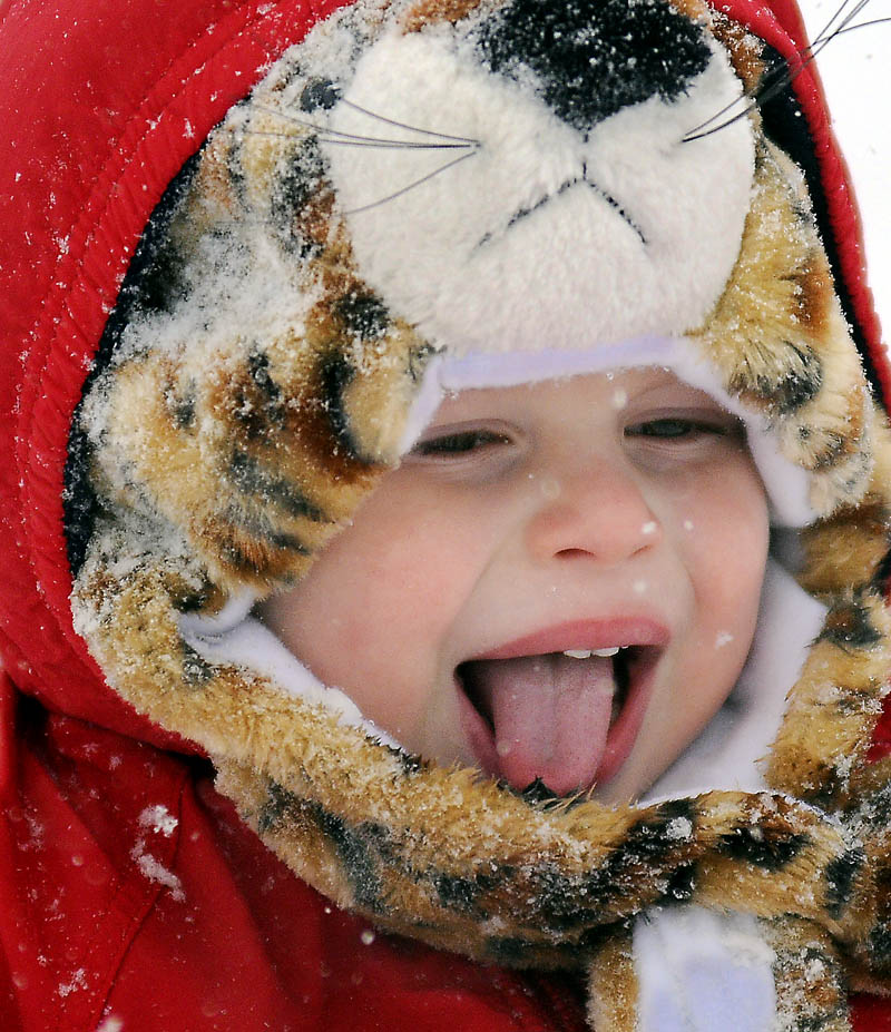 Ozy Pucciarelli, 2, samples snowflakes on Thursday, while being towed in a sled through Augusta by his mother, Izzy Pucciarelli.