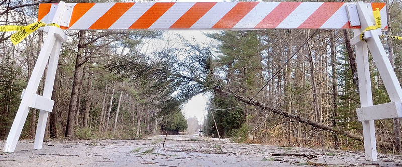 A downed tree hanging on utility wires blocks Lunts Hill Road at 1:38 on Thursday in Litchfield.