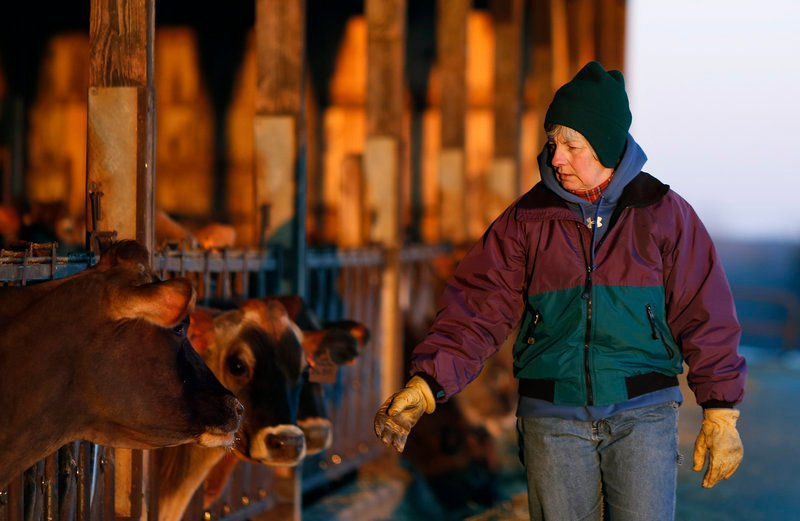 Libby Bleakney, a fifth generation dairy farmer who runs Highland Farms in Cornish with her family, says keeping the operation going is more than preserving a legacy – it's in her blood.