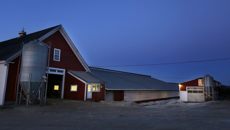 The light at dusk in January bathes Highland Farms in Cornish, a dairy farm owned and operated by the fifth generation of farmers. Despite federal and state safety nets, farms like this one struggle to make ends meet as prices for feed and fuel add to costs of production. Over decades, the number of Maine dairy operations has fallen precipitously, from 5,100 in 1945 to just 307 last year.