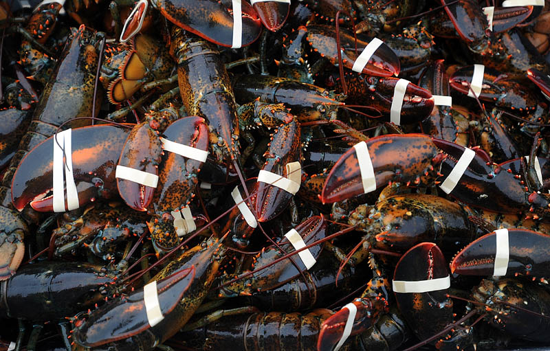 Gov. Paul LePage has signed off on L.D. 486, a long-debated legislative proposal creating the Maine Lobster Marketing Collaborative to replace the Lobster Promotion Council.