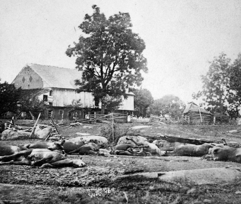 Capt. William Livermore, from Milo and a color guard with the 20th Maine, described this battle carnage in a letter to his brother.