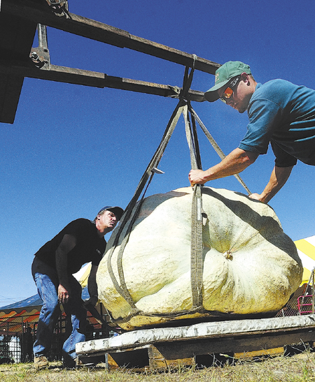 Al Berard, left, and Evan St. Jean guide one of Berard's pumpkins as a tractor lifts it off a scale and back onto a pallet, after being weighted during the opening day of the 2013 Windsor Fair today in Windsor.