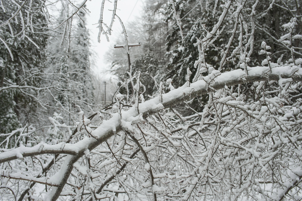 Downed limbs on the Perkins Point Road off Brewer Lake in Orrington on Sunday.