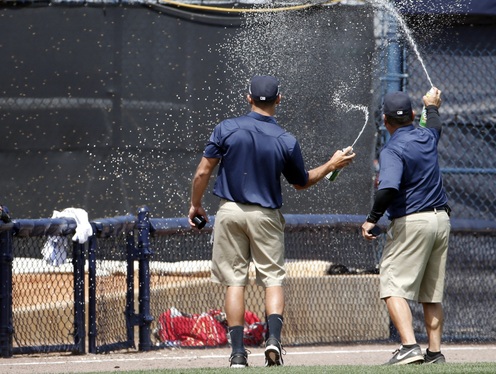 Groundskeepers spray insecticide on a swarm of bees that came from left field into the Boston Red Sox bullpen in the bottom of the third inning of a spring exhibition baseball game against the New York Yankees in Tampa, Fla., Tuesday, March 18, 2014. The game was delayed while the swarm was eradicated.