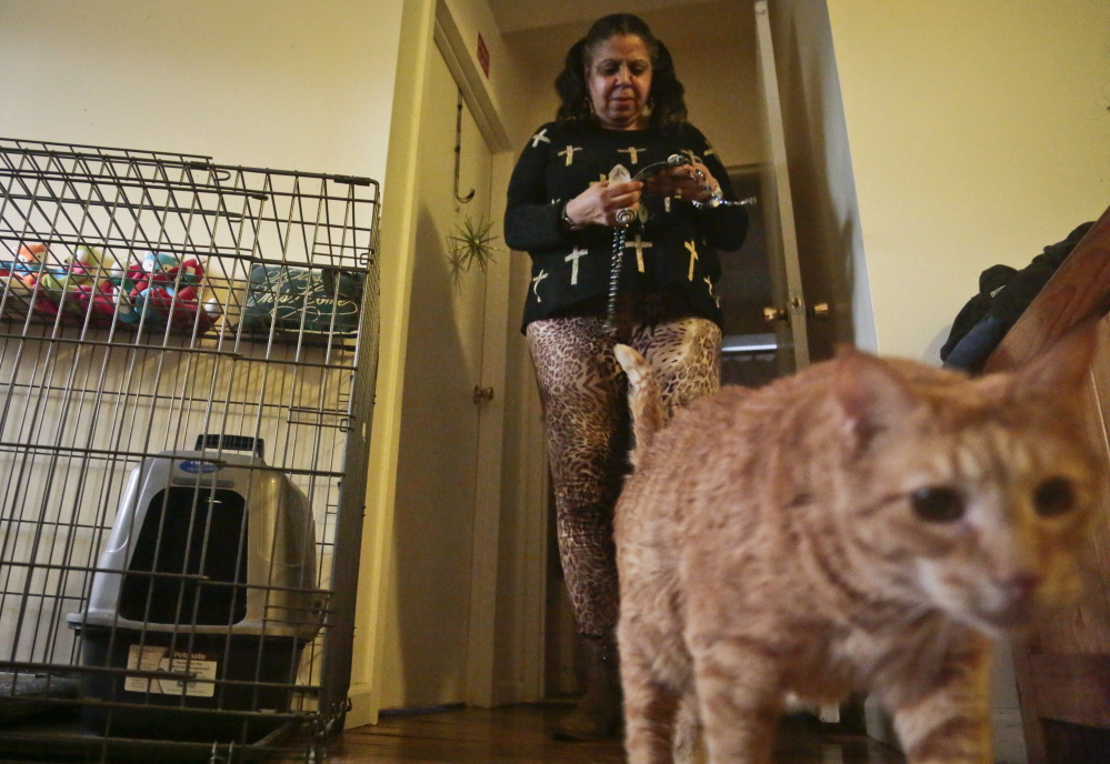 Pamela Isaac and one of her three cats, Lucy, share an apartment at a shelter for victims of domestic violence in New York.