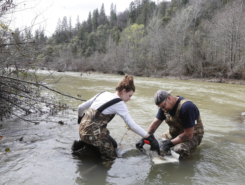 Tim Amavisca, 38, and his daughter Hailey, 15, use a sluice box to trap gold flakes on a textured rubber mat as they search for gold along the Bear River near Colfax, Calif.