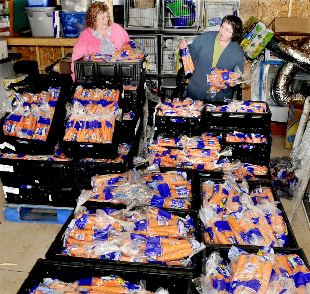 CARROT CORNER: Somerset Humane Society employee Christine Coolidge, left, and manager Hattie Spaulding look over some of the three tons of carrots that were left at the Skowhegan organization on Monday, April 14, 2014. The produce is good but may have some appearance issues that made it unfit for sale at a retail company.