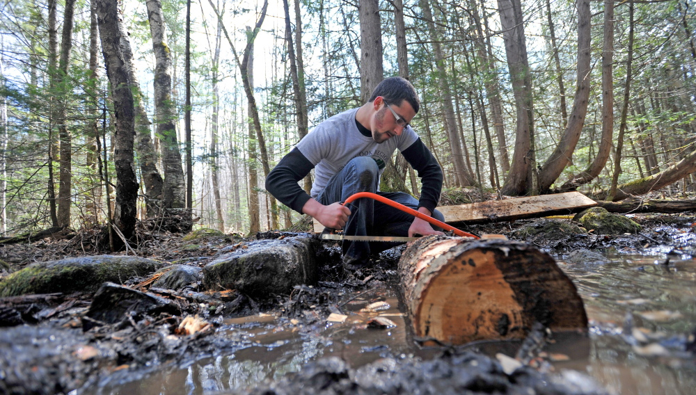 Kicking it up a notch: Nick Szatkowski, 19, a freshman at Unity College, cuts notches in a log as he helps to build a bog bridge on the Nature Trail as part of Unity College Community Trail Day on Saturday.