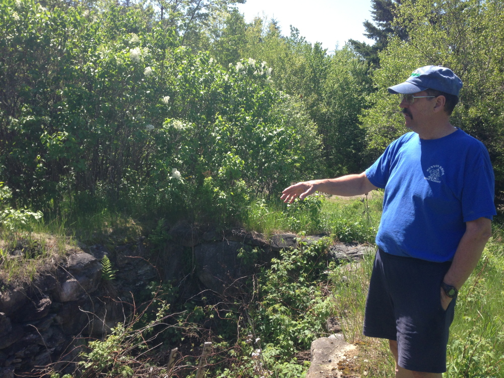 Staff photo by Jesse Scardina WHAT'S OLD IS NEW: Bill Skeeins, a member of the Thurston Park Committee, gestures Thursday to foundations of houses that once stood on the land the park was developed on.