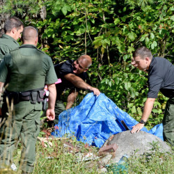 Investigators with the Maine State Police and Maine Warden's Service look for evidence in the death of Valerie Tieman, whose body was found in the woods behind 628 Norridgewock Road in Fairfield on Sept. 20.